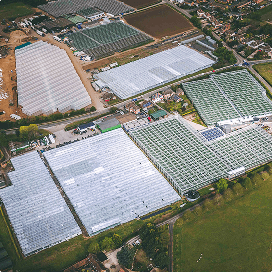 Aerial Photo of R & L Holt Greenhouses