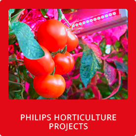 Philips Horticulture Projects